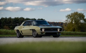 Picture Tree, Road, Grass, Chevrolet, 1969, Camaro, Chevrolet Camaro, Muscle car, Classic car, Wide Body Kit, …