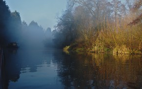 Picture morning, fog, trees, the sun, river, forest
