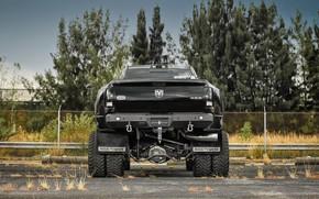 Picture Custom, Vehicle, Dodge Ram, Off road