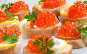Picture lemon, caviar, sandwiches, seafood