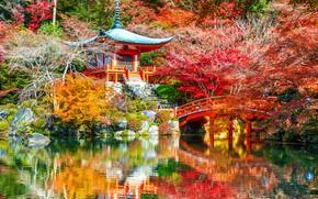 Picture autumn, leaves, trees, Park, Japan, Kyoto, nature, bridge, park, autumn, lake, leaves, tree, Daigoji Temple