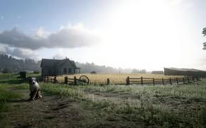 Picture Dog, Scarecrow, Arthur, Cowboy, Red Dead Redemption 2