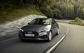 Picture Audi, speed, sedan, Audi A4, 2019