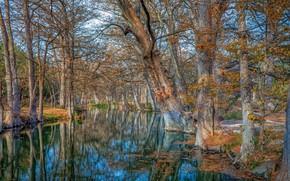 Picture Texas, Wimberley, Cypress Creek