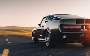 Picture road, Shelby GT500, Ford Mustang, rear view, muscle car, Shelby Mustang