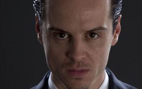 Picture look, portrait, bristles, Sherlock, Jim Moriarty, Sherlock BBC, Moriarty, Sherlock (TV series)