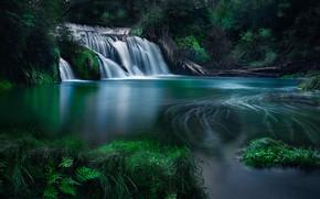Picture forest, river, waterfall, New Zealand, cascade, New Zealand, Hawke's Bay, River Maraetotara, Hawke's Bay, Maraetotara …
