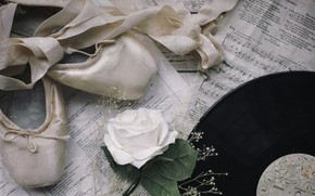Picture notes, rose, record, Pointe shoes