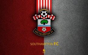 Picture wallpaper, sport, logo, football, English Premier League, Southampton