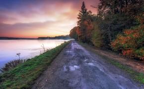 Wallpaper road, autumn, fog, river