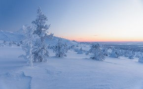 Picture winter, forest, the sky, snow, trees, mountains, in the snow, dal, ate, slope, horizon, hill, …