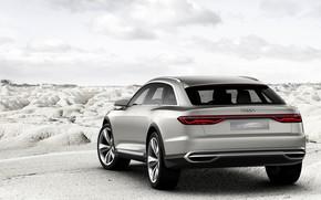 Picture Concept, Audi, back, Allroad, universal, 2015, Prologue