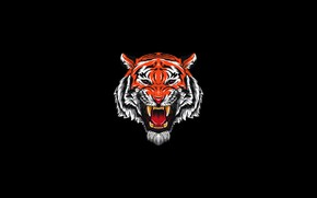 Picture Minimalism, Tiger, Cat, Style, Head, Mouth, Background, Fangs, Face, Predator, Art, Art, Tiger, Predator, Style, …