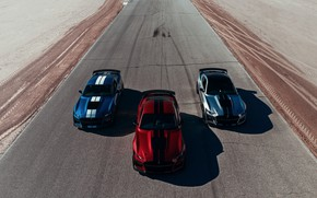 Picture blue, Mustang, Ford, Shelby, GT500, top, three, bloody, 2019, gray-silver