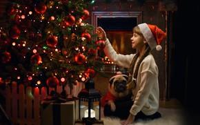 Picture mood, gift, dog, Christmas, girl, lantern, pug, New year, tree, cap, braids, George Bondarenko