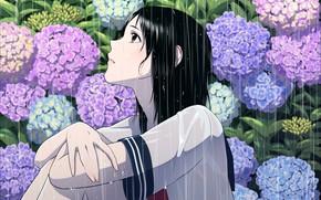 Picture girl, flowers, rain, anime, art