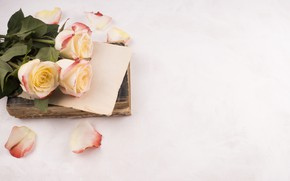 Picture books, roses, bouquet