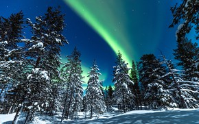 Picture winter, forest, snow, trees, Northern lights, ate, Finland, Finland, Lapland, Lapland, Rovaniemi