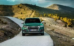 Picture Audi, hills, TDI, Machine, crossover, SQ5