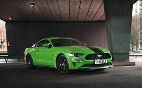 Picture Mustang, Ford, Fastback, Mustang GT, 2019