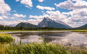 Picture forest, summer, the sky, grass, clouds, mountains, reflection, rocks, blue, shore, the slopes, tops, ate, …