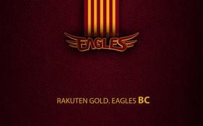 Picture wallpaper, sport, logo, baseball, Tohoku Rakuten Golden Eagles
