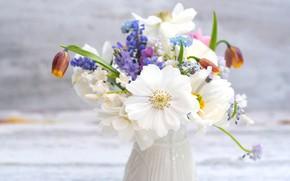 Wallpaper Muscari, anemones, bouquet, forget-me-nots, grouse, bokeh