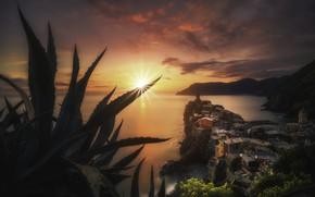 Wallpaper sunset, plants, Vernazza