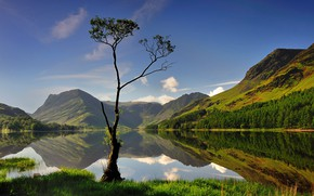 Picture forest, the sky, grass, water, the sun, trees, mountains, lake, reflection, Lake District, Cumbria