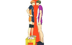 Picture guys, box, Volleyball, Haikyuu, Hinata,, Ushijima Of Takatoshi