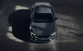 Picture Concept, Peugeot, 508, 2019, Sport Engineered