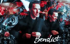 Picture look, roses, angel, tie, statue, shirt, jacket, red background, Benedict Cumberbatch, Benedict Cumberbatch, British actor, …