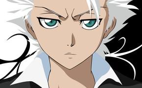 Picture look, anime, guy, Bleach, Hitsugaya, Toushiro