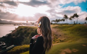 Picture flower, girl, the sun, hair