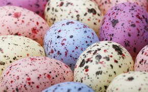 Picture eggs, colorful, spots