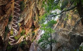 Picture trail, Utah, USA, serpentine, Zion National Park, Zion national Park, Walter's Wiggles trail