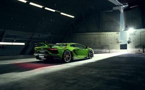 Picture Lamborghini, supercar, rear view, Aventador, Novitec, SVJ, 2019, Aventador SVJ