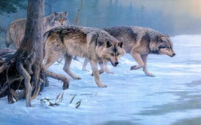 Picture winter, forest, snow, pack, picture, art, wolves, painting, Blizzard, snowfall, Daniel Smith