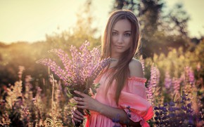 Picture field, grass, look, the sun, flowers, nature, pose, model, portrait, bouquet, makeup, dress, hairstyle, brown …