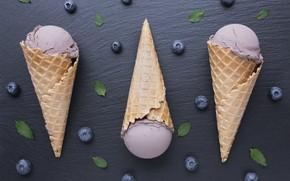 Picture blueberries, ice cream, horn, dessert, waffle