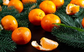 Picture Christmas, New year, tangerines, spruce branches