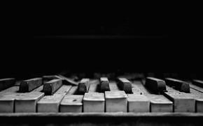 Picture plan, piano keys, Old Broken Piano Keys