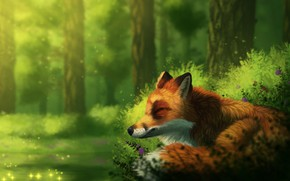 Picture forest, nature, Fox, sleep, by CreeperMan0508