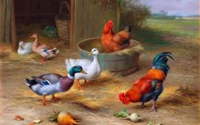 Picture Picture, Cock, Chicken, Geese, Edgar Hunt, Edgar Hunt, Одного поля ягода, Британский художник-анималист