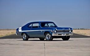 Picture Chevrolet, Muscle, Classic, 1970, Nova, Old, Original, Yenko Deuce, Blue & White