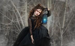 Picture dress, girl, lantern, Katie Andelman