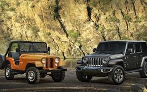 Picture 2018, Jeep, 1973, Wrangler Sahara, CJ-5