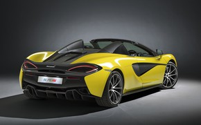Wallpaper McLaren, rear view, Spider, 570S