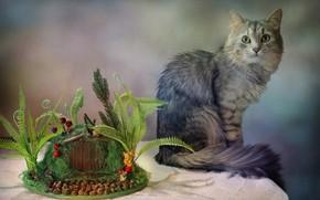 Picture cat, table, animal, Kovaleva Svetlana, Svetlana Kovaleva, топиарий