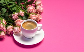 Picture background, pink, roses, Cup, Tania Shustyk